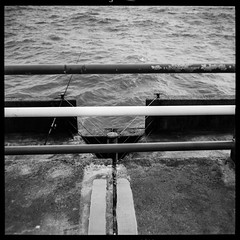 Untitled (agataurbaniak) Tags: film agfasuperisolette agfa super isolette agfasuperspeedex speedex solinar75mmf35 solinar 75mm 75 f35 35 mediumformat 6x6 folder camera rangefinder analog analogue 120 ilford fp4 ilfordfp4 125 125asa monochromatic monochrome blackandwhite leica m monochrom leicamonochrom typ246 type246 246 blackwhite digital carlzeiss planart250zm planar 50 50mm 50mm2 50mmf2 zm planart250 yellow filter yellowfilter