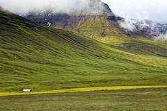 Fjarðabyggð (Boganeer) Tags: fjarðabyggð eastfjords iceland ísland mountain mountains green mist road canoneos canon landscape slope canon6d