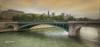(783/17) Los puentes sobre el Sena (Pablo Arias) Tags: pabloarias photoshop photomatix capturenxd agua río sena ciudad edificio cielo nubes puente textura árbol parque paris francia