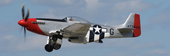 North American Aviation P-51D Mustang: Red Nose (albionphoto) Tags: worldwarii maam dday b17 flyingfortress b29 superfortress fifi p51d mustang spitfire supermarine f4f wildcat bell p39 airacobra reading pa usa rednose