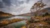 The end of autumn .... (Einir Wyn Leigh) Tags: landscape wales cymru lake autumn novermver gold orange mountain quarry tree leaf water aqua love happy nikon sky weather rocks