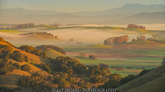 Rolling Hills Sunrise (Jaykhuang) Tags: rollinghills sunrise lowfog fallcolors bayarea sanfrancisco california morning lights jayhuangphotography