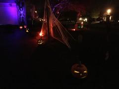 IMG_8085 (winchesterhollow) Tags: halloween halloween2017 jackolanterns pumpkins