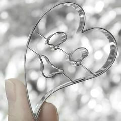 My little LoveSong (*c*j*) Tags: fingertips macromondays hmm 7dwf