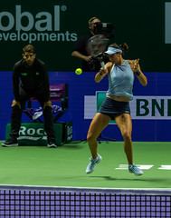 20171025-0I7A2176 (siddharthx) Tags: singapore sg simonahalep carolinegarcia elinasvitolina wtasingapore tennis womenstennis singaporeindoorstadium power grace elegance contest competition 1seed 4seed 6seed 8seed champions rally volley serve powerfulserves focus emotions sports wtatour porscheservesspeed bnpparibas stadium sport people wta winner sign crowd carolinewozniacki portrait actionshots frozenintime