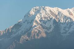 Annapurna sud, Népal (Pascale Jaquet & Olivier Noaillon) Tags: montagnes neige paysage sarangkot midwesterndevelopmentregion népal npl