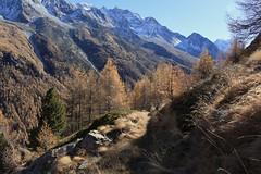 Arolla (bulbocode909) Tags: valais suisse arolla montagnes nature automne arbres mélèzes sentiers forêts paysages bleu vert orange valdhérens
