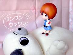 マコとガッツ? 🐶 (Dolly Fugu ღ) Tags: nendoroid mako mankanshoku uniform version yamani nuigurumi plush fluffy card captor sakura yume twins killlakill kill la guts dog kawaii kinako