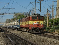12077 Chennai-Vijayawada Jan Shatabdi express. (Gautham Karthik) Tags: railroad train rail indianrailways india chennai vijayawada janshatabdi express trainspotting electriclocomotive wam4 arakkonamlocoshed ajj