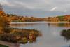 Virginia Water Lake in Autumn-EB160327 (tony.rummery) Tags: autumn autumncolours birds em10 lake mft microfourthirds omd olympus surrey virginiawater runnymededistrict england unitedkingdom gb