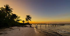 Florida Life: Coconut Bay (Thūncher Photography) Tags: sony a7r2 sonya7r2 ilce7rm2 zeissfe1635mmf4zaoss fx fullframe scenic landscape waterscape nature outdoors sky clouds colors sunset tropical palmtrees silhouettes pier bridge stuart florida southeastflorida martincounty indianriver