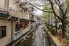 Sakura-Kiyamachi-Kioto-10 (luisete) Tags: hanami japan japón cerezosenflor kiyamachi kioto kyoto sakura