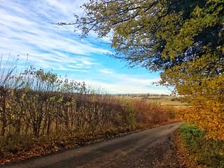 Near Turville, Buckinghamshire