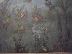Gli affreschi della villa di Livia a Palzzo Massimo _05
