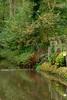 DSC06239 (edward.czekaj) Tags: 2017 meeuwen herfst valleivanabeek