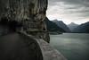 urnerland (Toni_V) Tags: m2404779 rangefinder digitalrangefinder messsucher leica leicam mp typ240 type240 28mm elmaritm12828asph urnerland vierwaldstättersee wegderschweiz alps alpen lake see landscape hiking wanderung randonnée escursione brunnenflüelenrütliwiese switzerland schweiz suisse svizzera svizra europe uri kantonuri ©toniv 2017 170731 analogefexpro2 niksoftware
