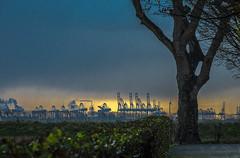 BELGIUM (WeVe1) Tags: antwerp port industry threat