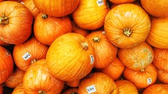 The after Halloween (Luc1659) Tags: orange zucche pumpkins mercato arancione vegetali novembre cucurbitaceae halloween