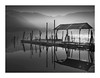 openspace (paolo paccagnella) Tags: openspace oldhouse eos5dm3 territorio veneto ambiente water blackandwhite bw bn minimal masterclass photo primephoto landscape light lake lago foto flickr framework fog italy paolo paccagnella allrightsreserved