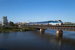 Oceanside, CA (Nils Wieske) Tags: usa kalifornien california surfliner amtrak railroad railway train zug züge eisenbahn bahn diesellok