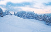 Winter joy (Dejan Hudoletnjak) Tags: winter snow childrens playing sledding snowflakes forest mountains landscapes