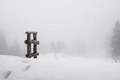 Whiteout (blacktea3) Tags: nebel fog mist mountains mountain berge alpen alps winter schnee snow