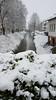 Falling snow and flowing water (grinnin1110) Tags: gersprenz deutschland bridge gewässer germany outdoor hesse hessen platanenallee flus river afternoon fluss de babenhausen europe neuerweg snow