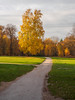 Virginia Water in Autumn-EB160330 (tony.rummery) Tags: autumn autumncolours em10 mft microfourthirds omd olympus path surrey tree virginiawater runnymededistrict england unitedkingdom gb