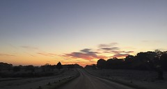 IMG_6240 (Sula Riedlinger) Tags: frost frostymorning sunrise sunriseinrichmondpark mistysunrise mist misty foggy greaterlondon londonroyalparks royalparks royalpark richmondpark richmond surrey bigsky clouds cloud redsky