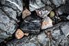 Pembrokeshire rock 1