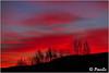 Momento vespertino (PacoSo) Tags: puestadesol crepúsculovespertino natura belzunce navarra pacoso