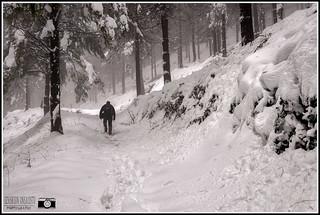 Un montañero en la nieve.