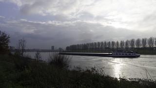 Binnenvaart op de Maas bij Venlo