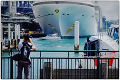 Golden Princess at Circular Quay Sydney (cupitt1) Tags: golden princess bridge sydney harbour cvircular quay jetty wharf ferry water nikcolourefex onlooker photographer cruise ship liner ocean