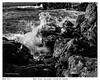 West Coast,Vancouver Island BC,Canada (wynb1) Tags: wynbunston bwwynbunston blackwhitephotos blackandwhite blackandwhitephotos bw bwwater sea seablackandwhite ocean bwocean bwrocks monochrome