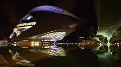 Valence - Espagne - Palau de les Arts Reina Sofía (AlCapitol) Tags: palaudelesartsreina sofía valence valencia nikon d800 opéra reflet reflection illumination citédesartsetdessciences