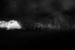 The Walk Home no.3 (SopheNic (DavidSenaPhoto)) Tags: fujinon35mmf14 blur street bnw icm bw xt2 fujifilm lowkey trees impressionisticphotograph monochrome intentionalcameramovement impressionism home halloween blackandwhite acros mono walk