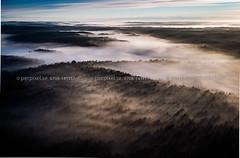 Säffle_170615-3093.jpg (perpixel.se) Tags: säffle 3 skog hargene dimma flygfoto värmland sverige swe