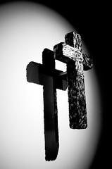 a crux, a snake (Gontrano) Tags: venice venezia jan fabre sculpture glass crux snake bn bw biennale
