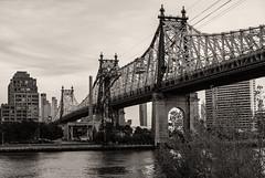 59th Street Bridge and Tram (LJS74) Tags: newyorkcity nyc manhattan rooseveltisland tramway tram 59thstreetbridge edkochqueensborobridge queensborobridge eastriver bridge architecture brickbuilding cityscape blackandwhite blackwhite bw monochrome