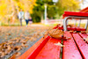 Autunno al parco (mariateresa toledo) Tags: autunno autumn foglie leaves panchina bench rosso red lugano parcociani bokeh sonynex7 distagontfe1435 zeiss mariateresatoledo dsc08084