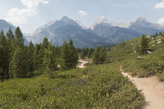 """Views of the Tetons from Taggart Lake Trail • <a style=""""font-size:0.8em;"""" href=""""http://www.flickr.com/photos/63501323@N07/37594652654/"""" target=""""_blank"""">View on Flickr</a>"""