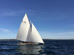 C73 Lincoln Rose (D.R.M.S.) Tags: couta coutaboat sailing wooden boat mornington morningtonpeninsula morningtonyachtclub morningtonharbour portphillipbay melbourne victoria australia sea yacht sail
