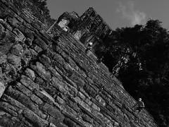 Ruins No 7 (Isaac Palacio) Tags: blackandwhite street maya photography latinamerica people chiapas flickr mexico en blancoynegro noiretblanc pretoebranco zwartwit biancoenero bnw palenque streetphoto miligramo