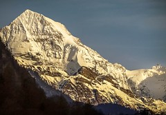Mönch and Jungfraujoch (einaz80) Tags: mönch monch moench monk jungfraujoch sphynx observatory mountain mount summit switzerland suisse svizzera schweiz bernese berner oberland sunset wilderswil montagna