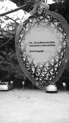 Ah... (medeirosisabel16) Tags: tree quote by zack magiezi frase campos do jordão alma foto filtro celular cell phone arte art museu felícia leirner reflexão peb bw branco preto black white