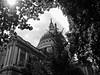 St Pauls's Light (micro43andco) Tags: london saint paul cathedral england b w black white noir et blanc londres pauls cross croix catholic