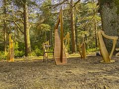 Les Harpes (InLoveWithSnow) Tags: harpes foret cedre landart sud