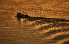 Wake in the gold (Valley Imagery) Tags: philadelphia water sunset boat fishing golden sony a99ii