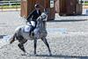 Strong personality?... (JOAO DE BARROS) Tags: barros equestrian joão horse lusitano